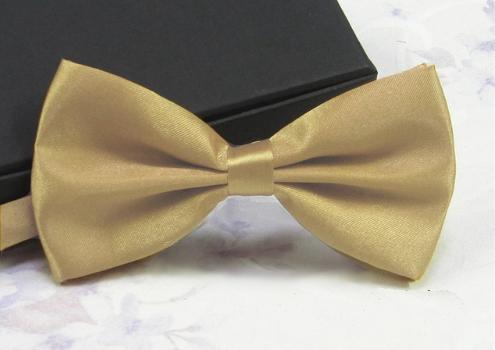 bd28eb3ffde6 Older Boys, Mens Beige - Gold Satin Bow Tie