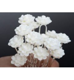 "Set of 6 Pretty Ivory Resin Flower Hair Pins ""Amy"""